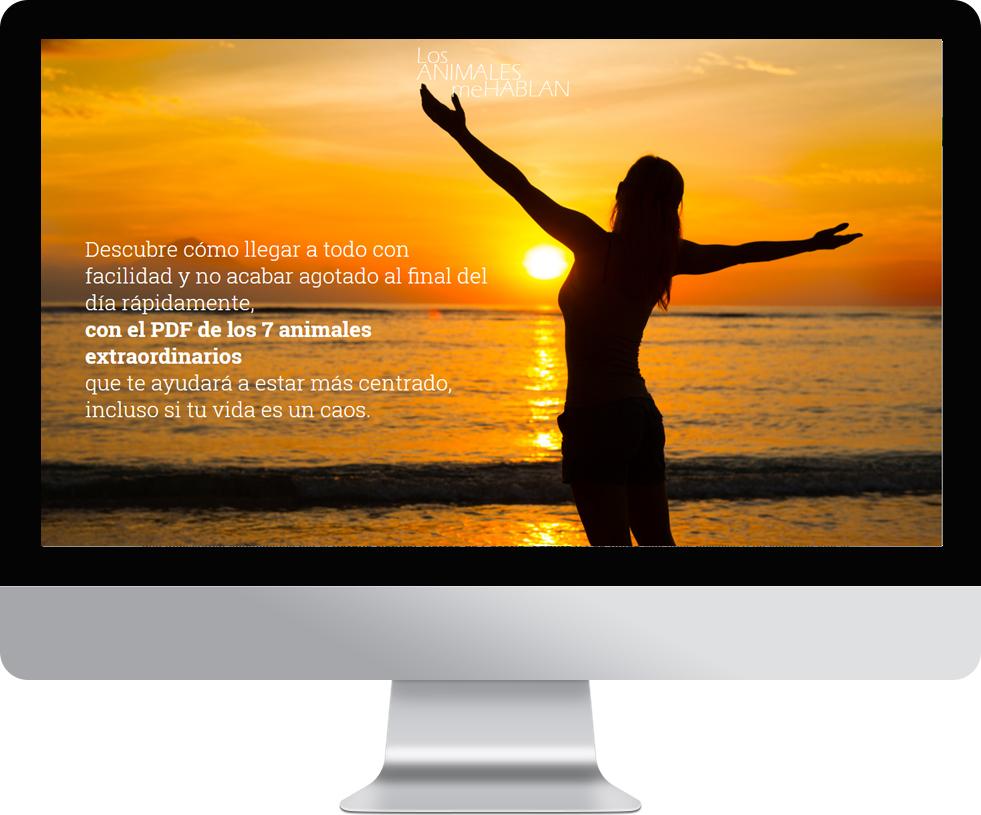 Landing page en pantalla grande