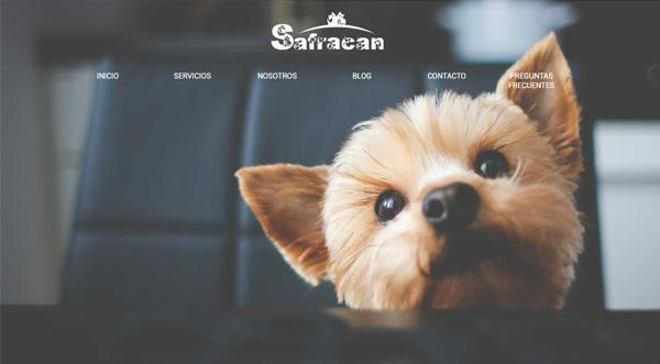Página web de Safracan