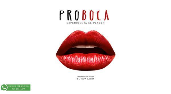 Página web de Proboca